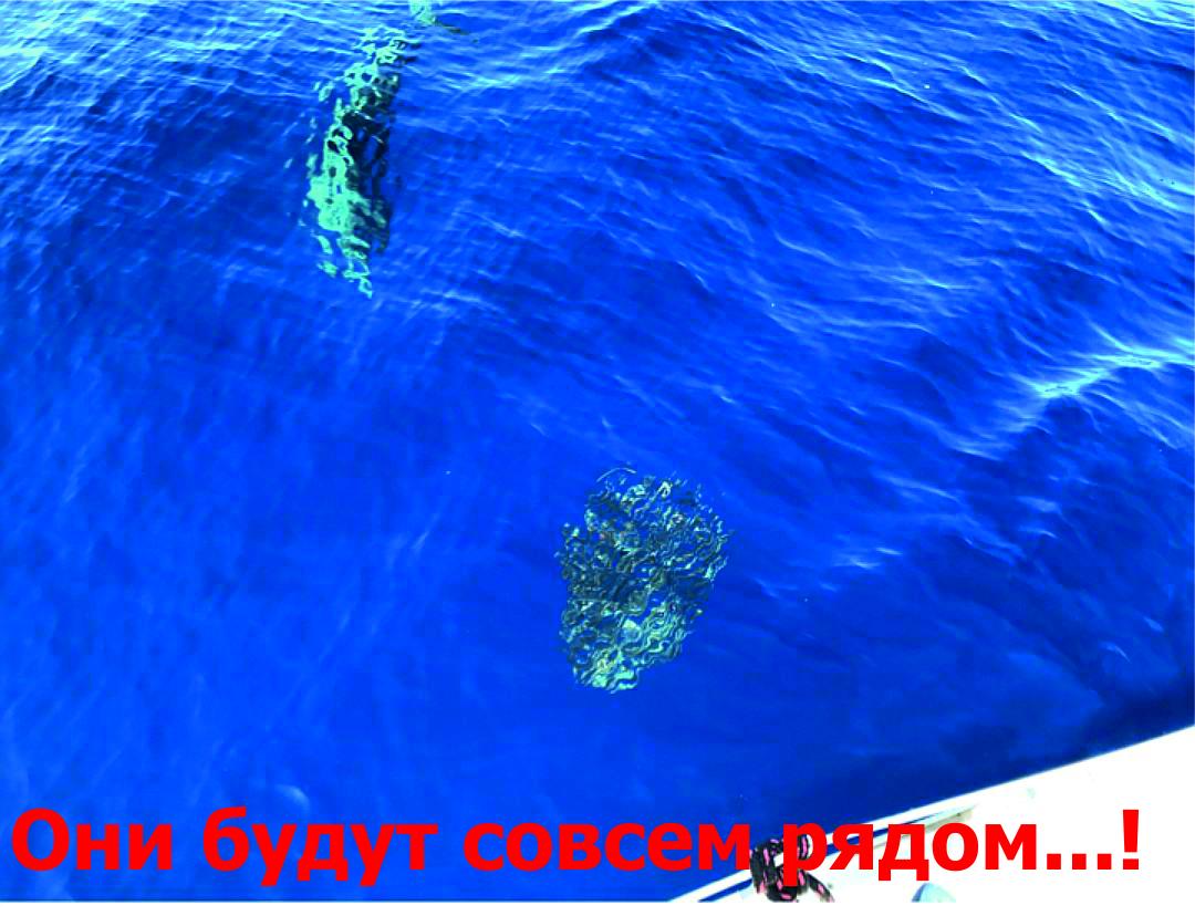 Карибы под парусом_4
